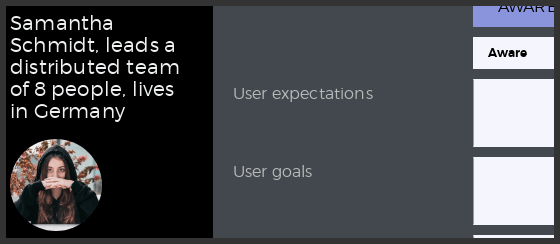 Persona demographics UXPressia